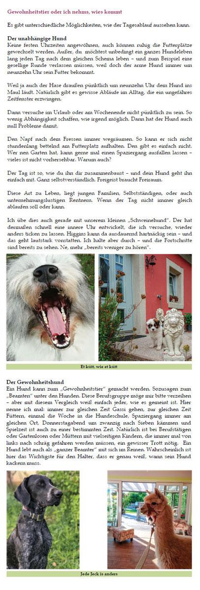 Welpenkauf Hundekauf Buch Rassen Elo Familie