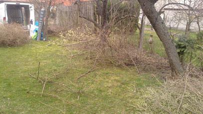 Im Garten gibts auch jede Menge zu tun