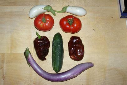 """Violette Schlangenmelanzani, Feldgurke, Schokoladenpaprika, Tomate """"Trophy"""", Weiße Melanzani"""