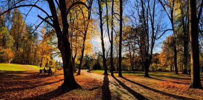 Foto 2 - im Park