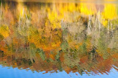 Christian - Foto 11 - Herbst fällt ins Wasser