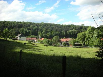 Hier bin ich 2012 gelandet,128 Einwohner und 2 Freibäder-5 min zum Schloss Berlepsch