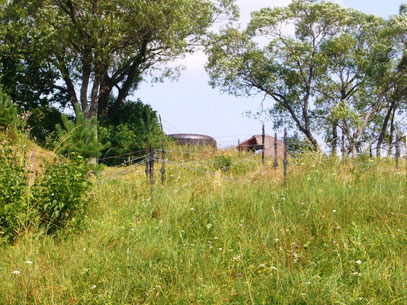Ein ehemaliger Bunker des Ostwall