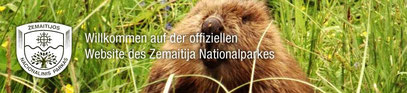 Offizielle Homepage des Zemaitija Nationalparkes mit Informationen zum Park, der Natur und Angeboten für Touristen!