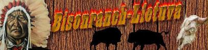 """Im Herzen von Litauen bei Kelmé liegt der erste und bislang größte Zuchtbetrieb für """"Plains Buffalos"""", dem amerikanischen Prairie Bison, im Baltikum."""