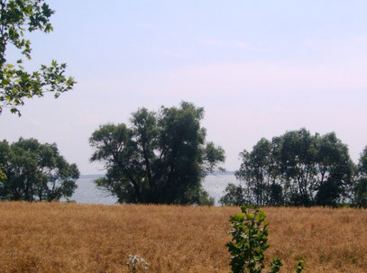 Einer der unzähligen Seen der Masuren - hier bei Gizycko.