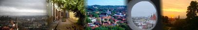 Homepage der in Vilnius geborenen, lizensierten & deutschsprachigen Stadtführerin  Teresa Golovenkova. Sie zeigt Ihnen auch die geheimnisvollen Orte von Vilnius...