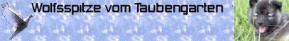 http://vom-taubengarten.jimdo.com/