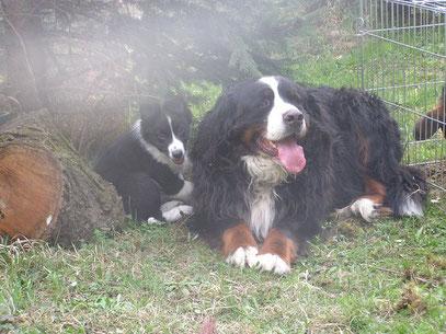 Artus und ich 2010