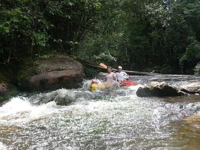 La crique Portal en Guyane