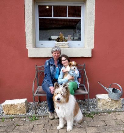 Kindergeeignete Hunderasse Familienhund Elo