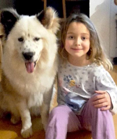 Welche Hunderasse zu Kind