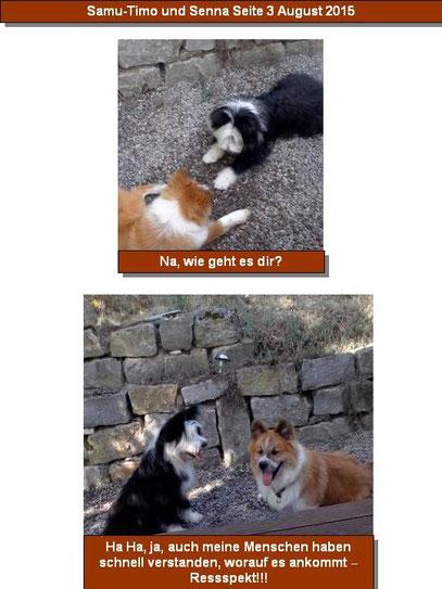 Erziehung Hund Elo Welpe Zucht Hundeschule Kind Freizeit Natur Hunderasse mittelgroß
