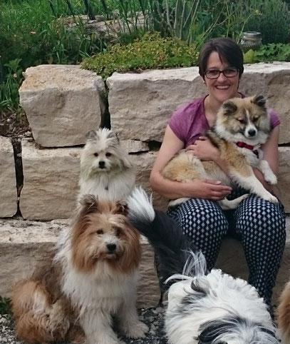 Erziehung zum Familienhund
