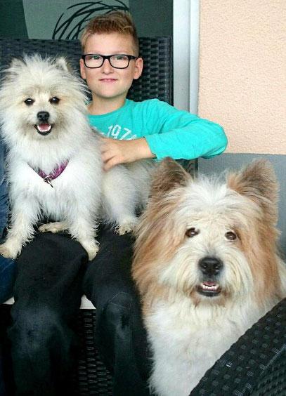 Familienhund für Kinder kinderfreundlich Rasse Hund Kind