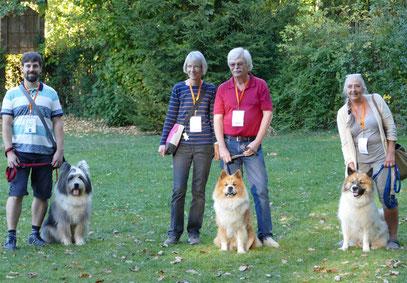Foto: Michaela Hilburger. U-Billie-Jean-Mikko, Samu-Timo und Uzou von Werths Echte