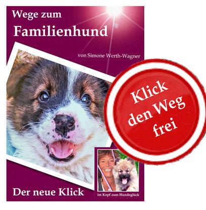 Familienhund Erziehung