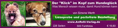 Erziehung Familienhund Welpe Junghund erwachsener Hund Hundeschule Welpenschule
