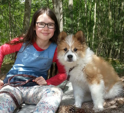 Hund für Kinder Elo Erziehung Klick im Kopf