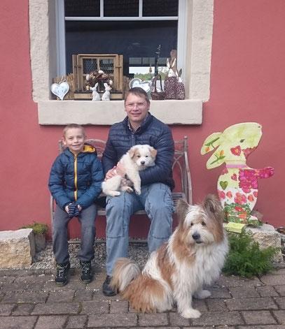 Hunderasse für Familien mit Kind