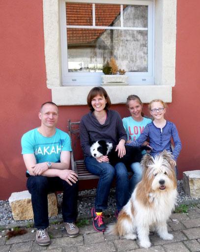 Familienhund Elo