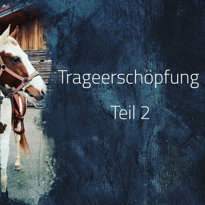 Die Trageerschöpfung des Pferdes - Pferdephysiotherapie München