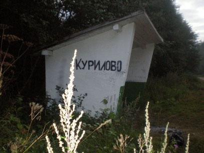 Фото: Елены Гоголевой 2009г.