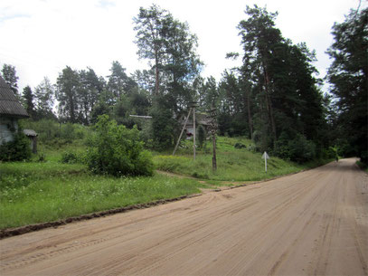 Главная улица Кицково - дорога Максютино-Родионово. Фото из архива Елены Рыбаченко