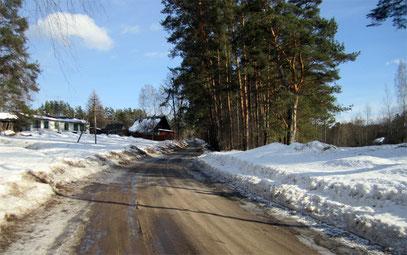Фото из архива Елены Рыбаченко
