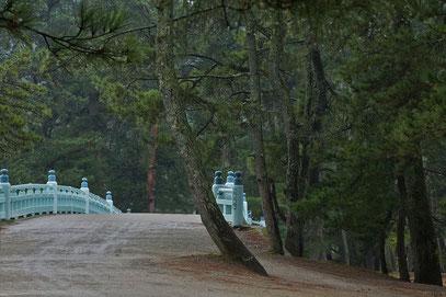 Amanohashidate - Brücke zum Weg über die 3,5 lange Sandbank mit den 8000 Kiefern