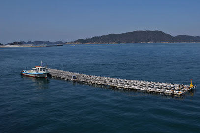 Toba - die Mikimoto-Perlen werden im Meer in solchen Anlagen gezüchtet