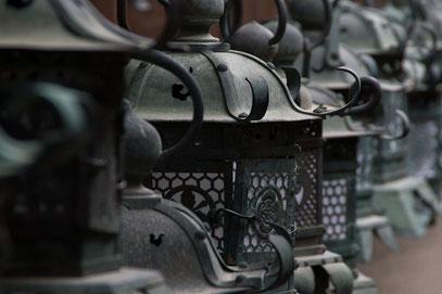 Nara - Lampe an Lampe reihst sich im wunderbaren Kasuga-Taisha-Schrein