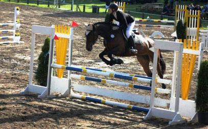 Jenny Sester Stil-A und Springpferde-L gewonnen