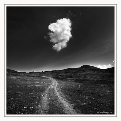 """""""Le nuage 1"""" Réf : Lig14 005"""