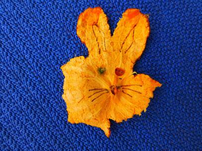 Eine Mandarine gegessen- Hase da gesessen
