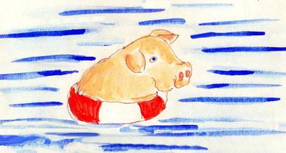 ROSA hat ein MEER-Schweinchen.