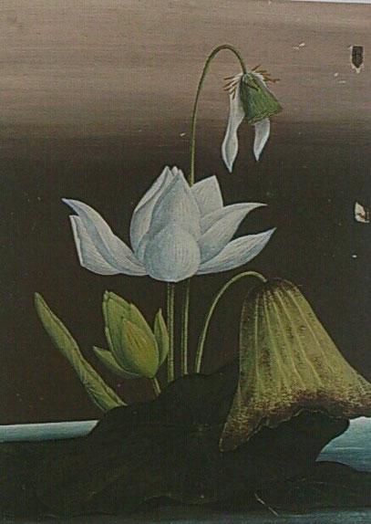 「蓮華之図」1868年頃 東叡山護国院蔵 (展覧会カタログP.66)