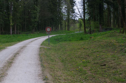 Weg vom zerstörten Ort in den Haumontwald