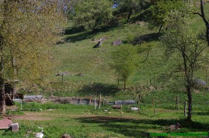 Weiterer Brückensockel im gegenüberliegendem Hang