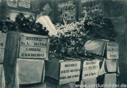 Die Kisten mit den Gebeinen - aufgeteilt nach den Fundorten. Im Hintergrund sieht man Bilder der Verschollenen, die Angehörige dort angebracht haben