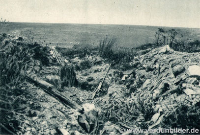 Der Vauxberg kurz nach dem Krieg