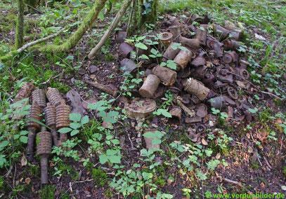 In den Wäldern von Verdun