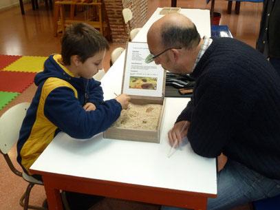 Últim taller de paleontologia