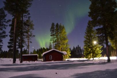 """So schön wie der Sommer ist auch das Polarlicht über unserem Ferienhaus """"Nils Holgersson"""" im Winter"""