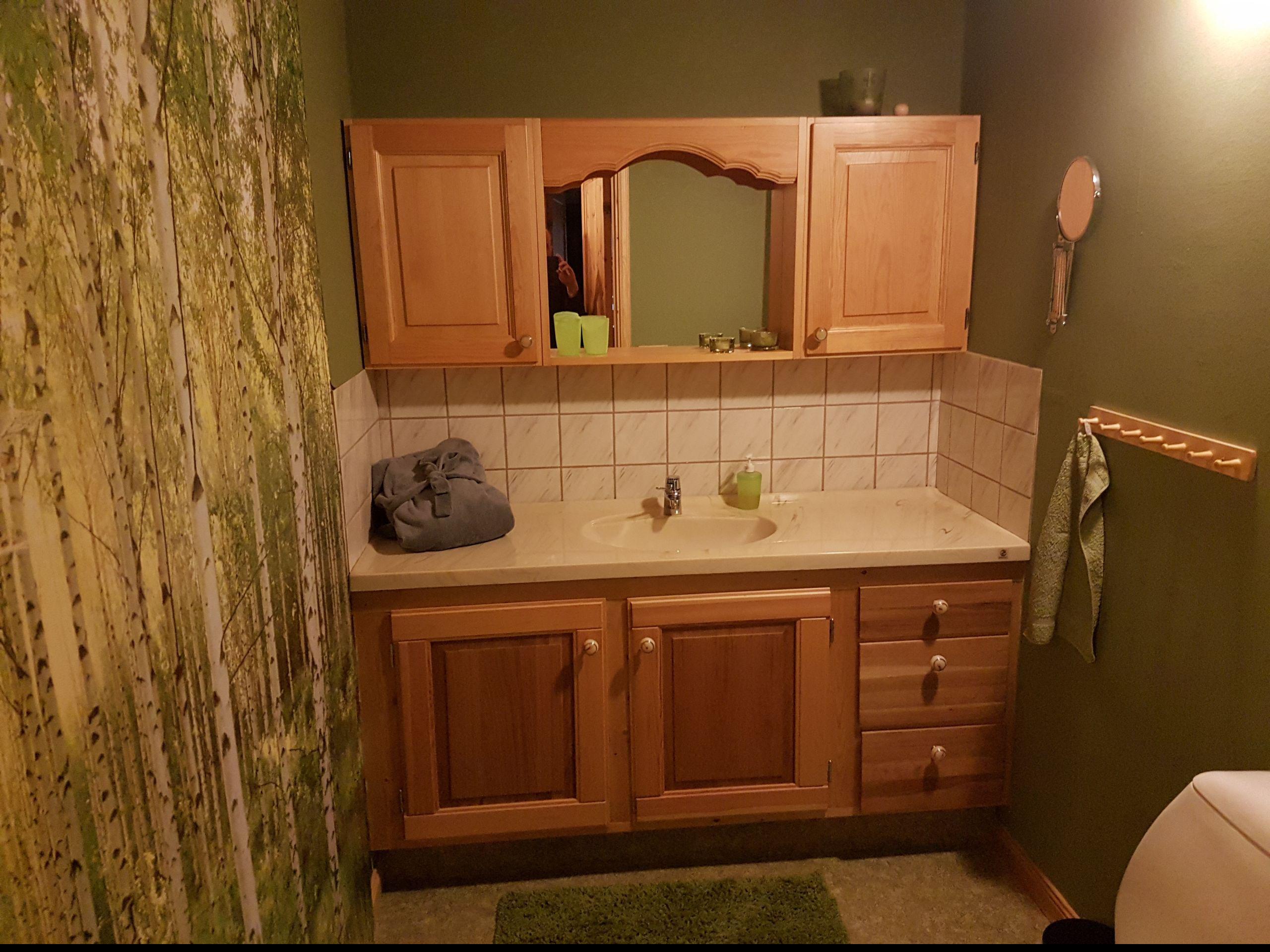 """Bad """"Birkenwald"""" mit WC und Waschgelegenheit (untere Wohnetage)"""