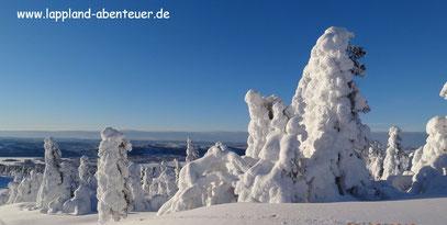 Großartiger kann die Winterlandschaft nicht sein. Selbstverständlich legen wir immer wieder Pausen ein um ein schönes Foto in den Kasten zu bekommen