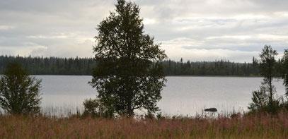 """""""Unser See"""" - nur 200m vom Haus entfernt"""