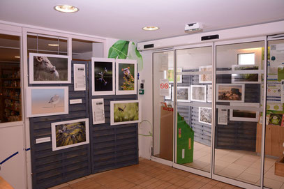Ma photo en bonne place juste derrière les portes coulissantes de l'entrée © Camera Natura