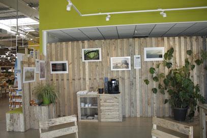 """Ma photo """"L'enjambée"""" au Biocoop des Olonnes © Camera Natura"""