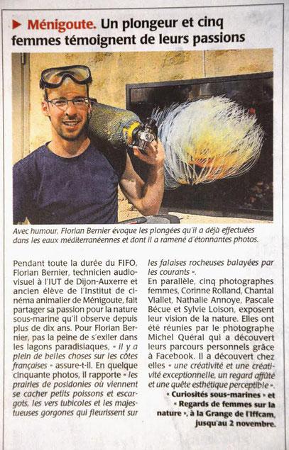 Florian Bernier Ménigoute Courrier de l'Ouest FIFO Exposition plongeur